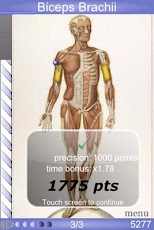 Speed Muscles MD
