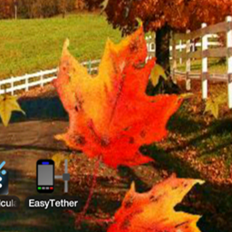 Download Autumn Leaves 2 Live Wallpaper 1 0 Apk For Android Appvn Android